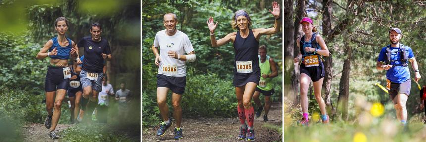 Behaj lesmi v Štiavnických vrchoch
